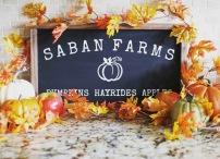 saban farms rep pic 2